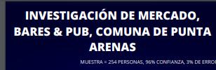 Investigación de Mercado Bares y Pub comuna Punta Arenas